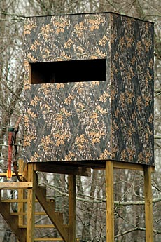 Then This Authentic Licensed Mossy Oak Paneling Is Just For You